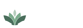 Neil Conaty Acupuncture, Bainbridge Island & Seattle